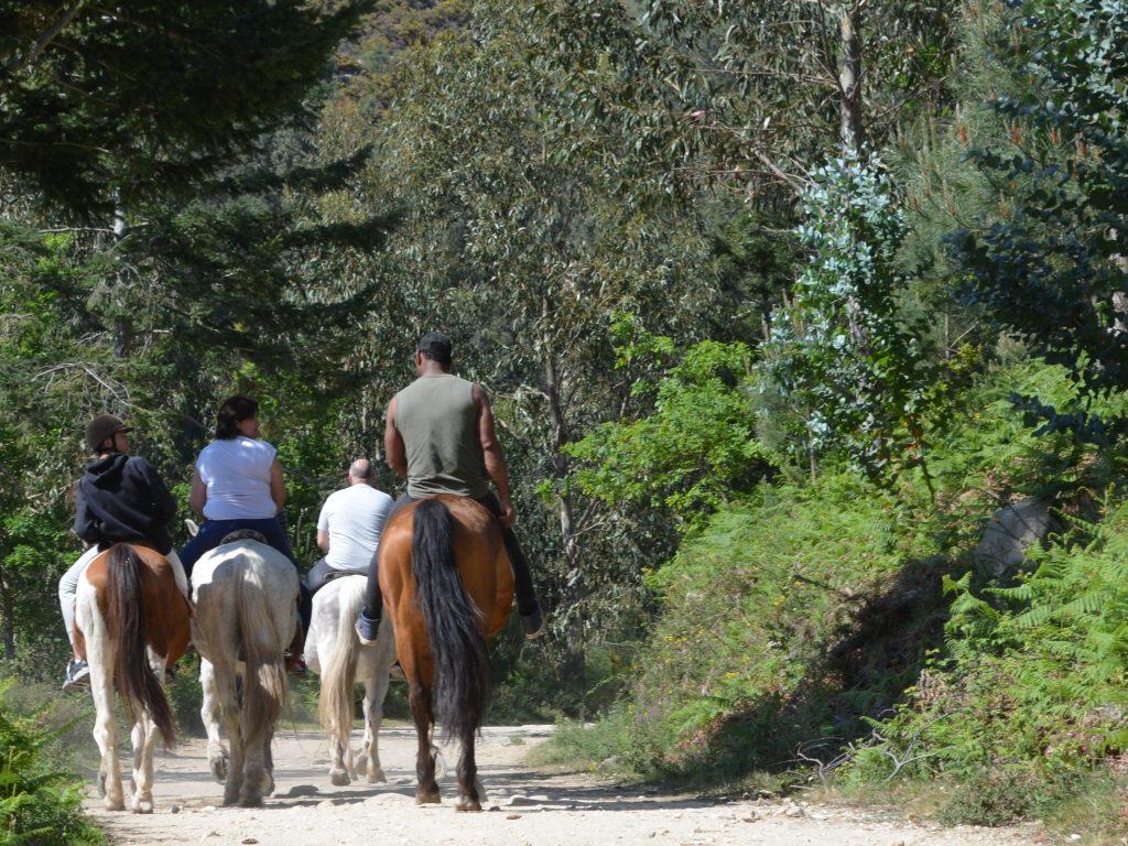 Paseos a cabalo en Oia. Mougás. Galicia